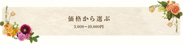 5,000~10,000円